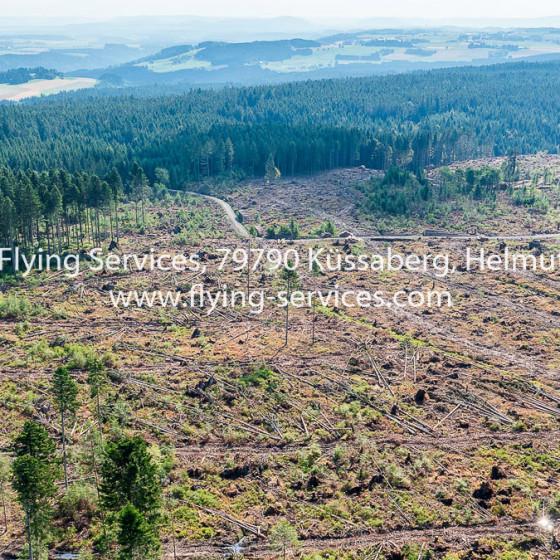 Luftbild Dokumentation Tornado Schaden 2015 Bonndorfer Wald FS P1050724