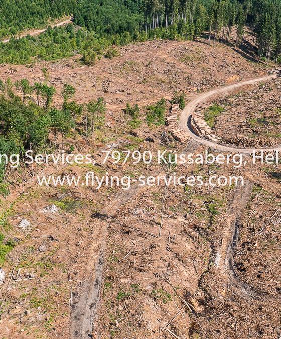 Luftbild Dokumentation Tornado Schaden 2015 Bonndorfer Wald FS P1050778